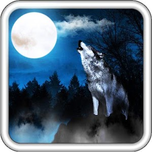 Wolf Sounds Top Live Wallpaper Free Android App Market