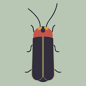 Blinker,the Firefly Attractor!