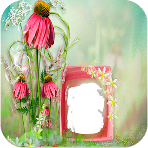 Love Rose Photo Frames APK
