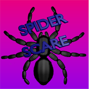 Spider Scare