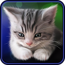 Sleepy Kitten Live Wallpaper APK