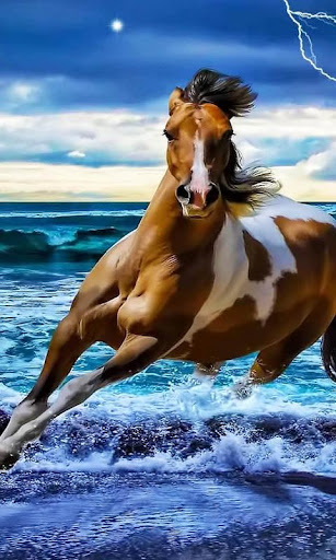 Horses Free HD Live Wallpaper