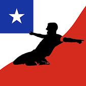 Primera División, Liga Chilena