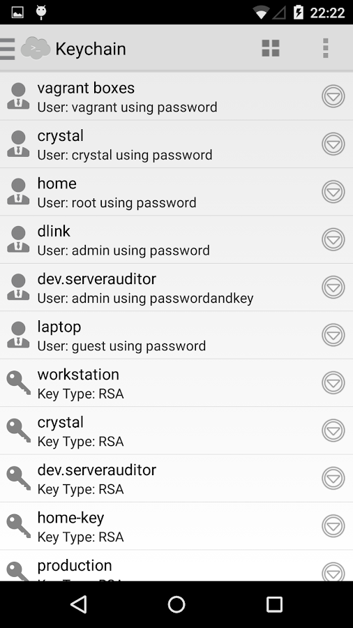 Serverauditor - ssh client - screenshot
