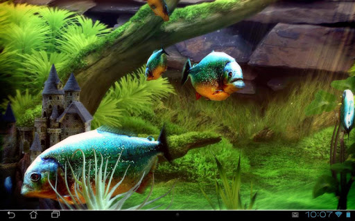 Piranha Aquarium 3D lwp app for Android screenshot