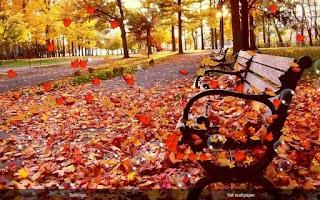 Screenshot of Autumn Pro Live Wallpaper