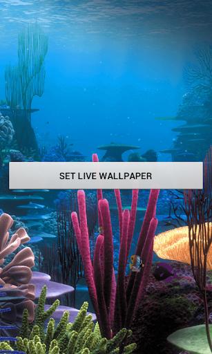 動態壁紙魚水族館