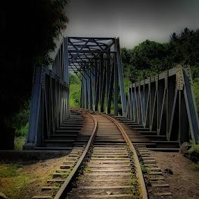 Bridge of nostalgia by Blue Bell Bantigue - Transportation Railway Tracks ( #bridgeofnostalgia, #suspendedinfra, #railwaybridgeguinobatan )