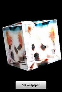 三維可愛的小狗68