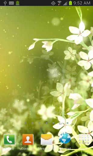 White Flower Live Wallpaper