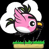 100 Jumpy Bird