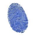 Fingerprint lock screen icon