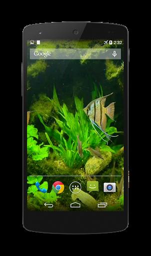 Fish Tank HD Live Wallpaper