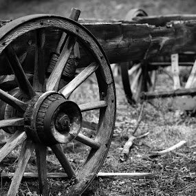 Old Wagon Wheel by Derrick Leiting - Black & White Objects & Still Life ( old, wheel, art, colorado, white, wagon, 50mm, photography, mountains, nikon, black, decay, abandoned, covered )