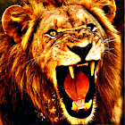 Lion King Sound Effects icon