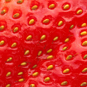 Fruit Wallpapers