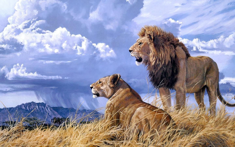 Blue lion wallpaper hd - photo#20