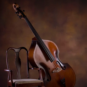 The Bass by Kelly Goode - Artistic Objects Musical Instruments ( object, musical, instrument )