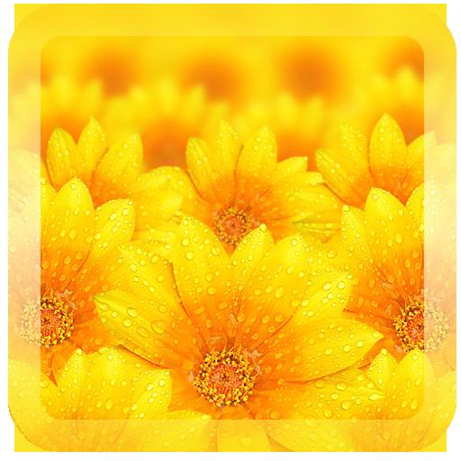 雨天夢幻繽紛花朵壁紙 個人化 App LOGO-硬是要APP