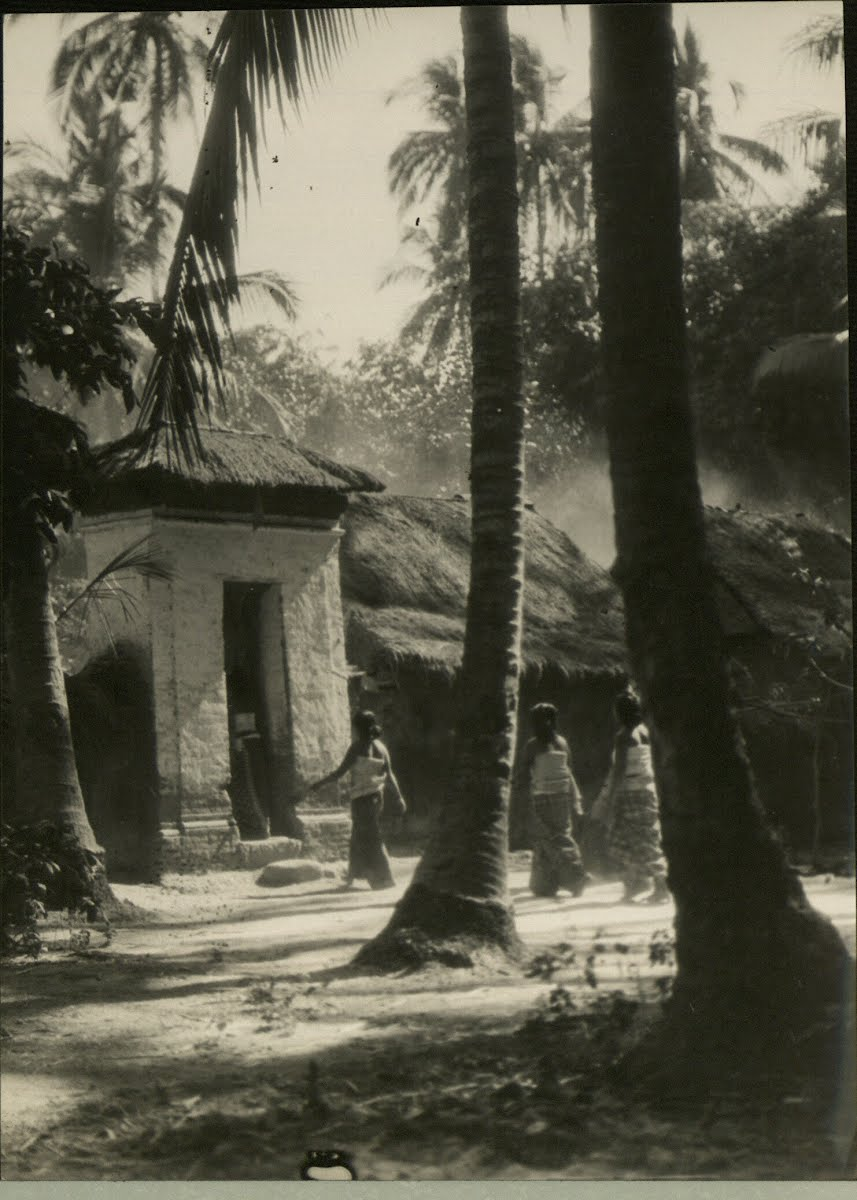 Dutch East Indies Bali Various