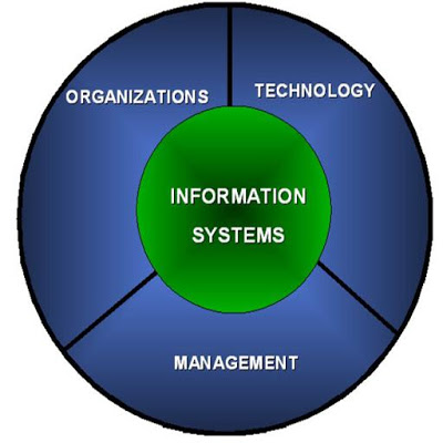Management Information Systems - screenshot