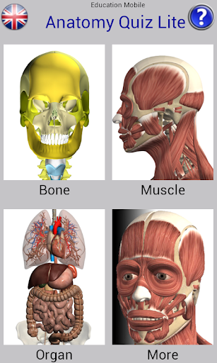 Anatomy Quiz Free