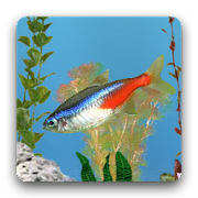 App aniPet Freshwater Live WP APK for Windows Phone