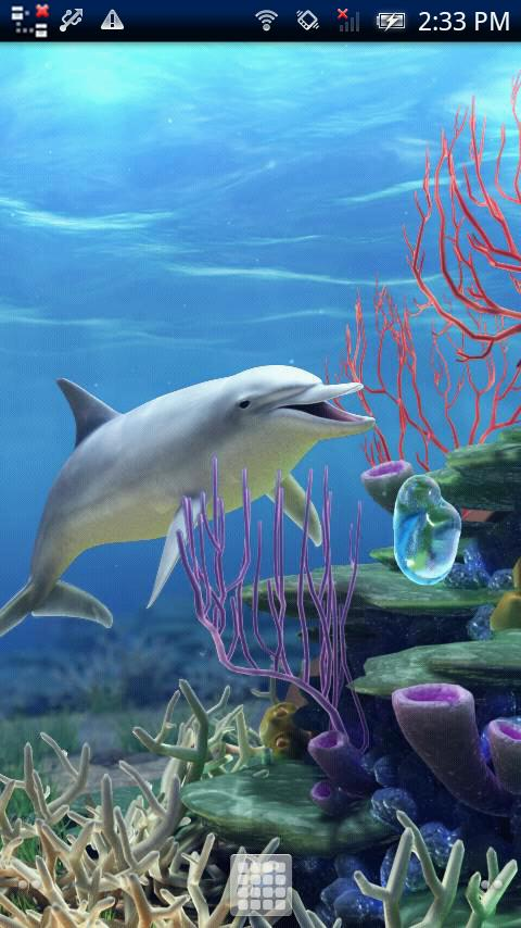 Dolphin CoralReef Trial- screenshot