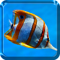 Sea Animals Live Wallpaper icon
