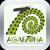 Agafona