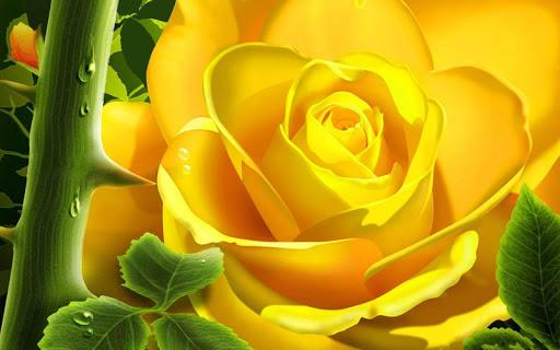 3D Rose  screenshots 2
