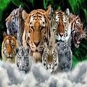 Tiger 001 logo