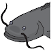 Catfish Tactics & Secret Baits Icon