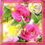 Roses Diamond live Wallpaper