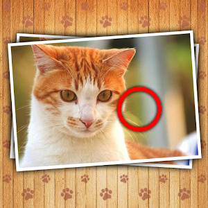 Find Photo Differences – Cats for PC and MAC