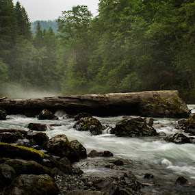 by Blanca Braun - Nature Up Close Natural Waterdrops