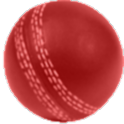 Android Cricket Scorer logo