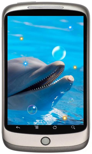 Dolphines Beach live wallpaper