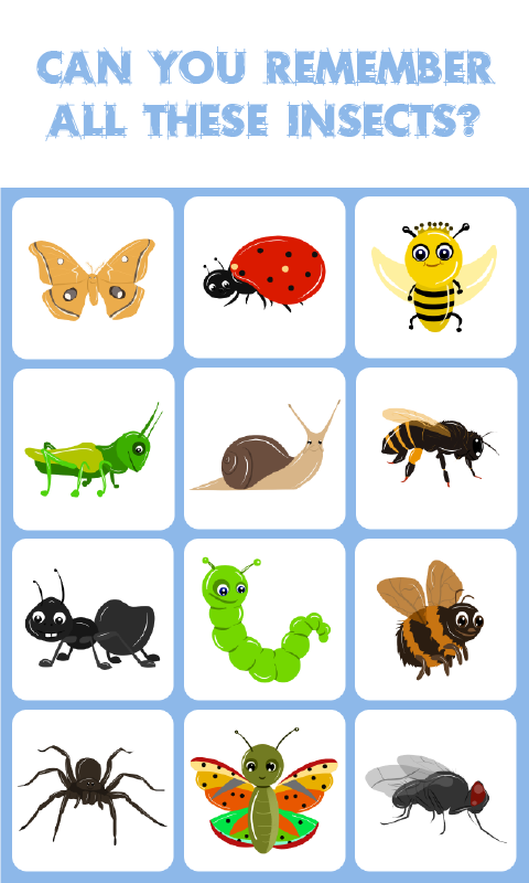 Insects Match :Memory ...