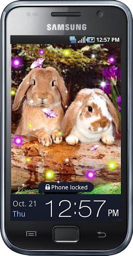 Rabbits Joke live wallpaper
