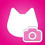Cat feelings camera to get used to cover APK icon