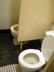 toilet photo courtesy of *A