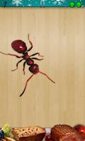 Screenshot of Ant Smasher Christmas Free App