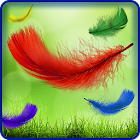 Feather Live Wallpaper HD Full icon