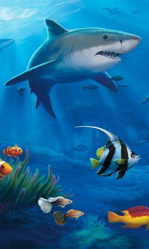 Ocean Aquarium 3D Wallpaper