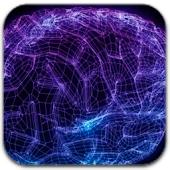 3D Brain Scanning LWP