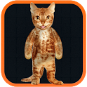 Real Talking Cat icon