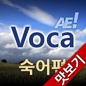 AE Voca 숙어편_맛보기