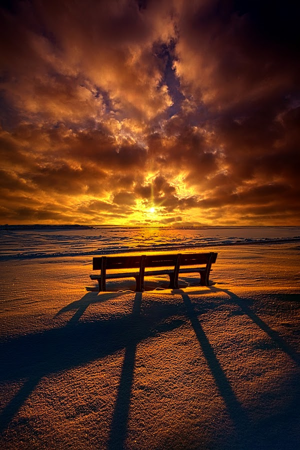I Would Trade A Thousand Ever Afters by Phil Koch - Landscapes Sunsets & Sunrises ( adirondack chairs, vertical, photograph, bench, farmland, yellow, furniture, storm, leaves, love, sky, nature, tree, autumn, shadow, snow, flower, orange, wind, twilight, agriculture, horizon, portrait, environment, winter, dawn, season, national geographic, serene, trees, floral, hope, inspirational, natural light, wisconsin, object, phil koch, spring, sun, photography, farm, ice, horizons, rain, inspired, clouds, office, vertical lines, hdr, park, green, scenic, morning, shadows, wild flowers, field, pwc, red, blue, sunset, peace, fall, meadow, summer, earth, sunrise, public, landscapes,  )