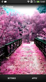 櫻花 動態壁紙